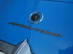 trunk-badges