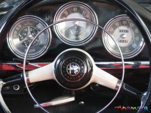 06320 spider gauges