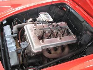 spider 379585 engine