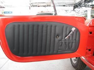 SPider 379585 door panel