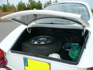 10121380456 trunk