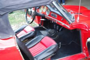 spider 373358 interior