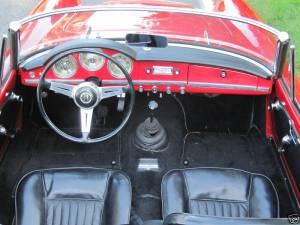 spider 372671 interior